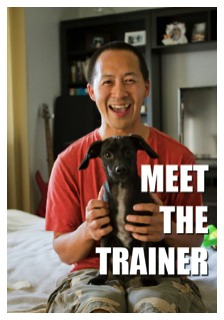Best Dog Trainers Westchester Ny